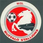 Buffalo Stallions of the MISL
